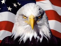 Patriotic eagle image from America Solidarity