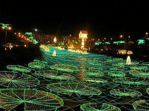 Lights of Medellin 1 from Alejandra Zapata