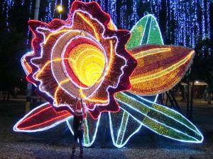 Lights of Medellin 4 from SajoR