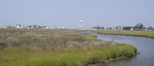 Tangier Island image by Elaine Meil