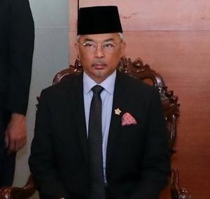 Yang Di-Pertuan Agong XVI image from the US Embassy Kuala Lumpur